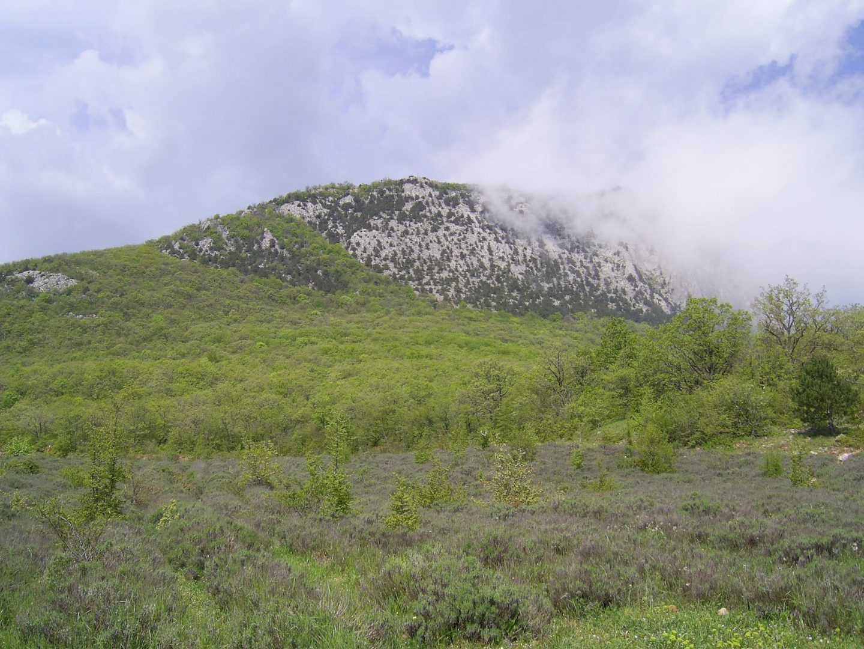 Горы Парагильмен в тумане