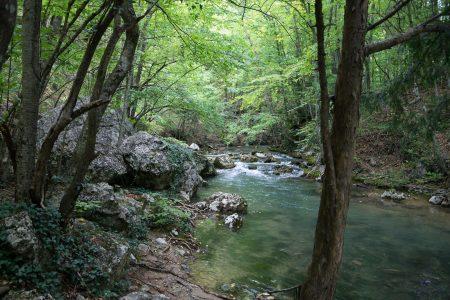 Река Альма