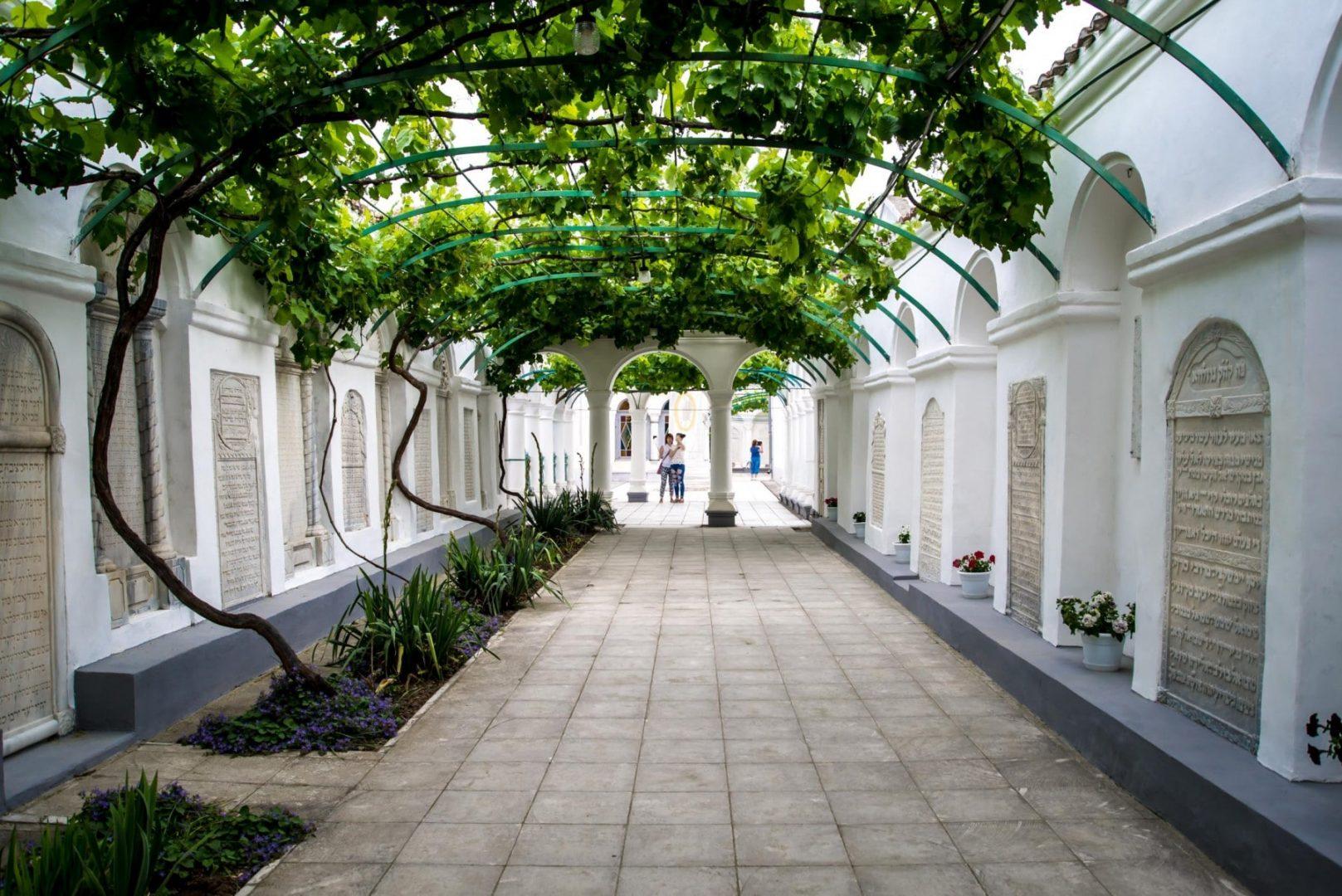 Виноградный двор Караимских кенас