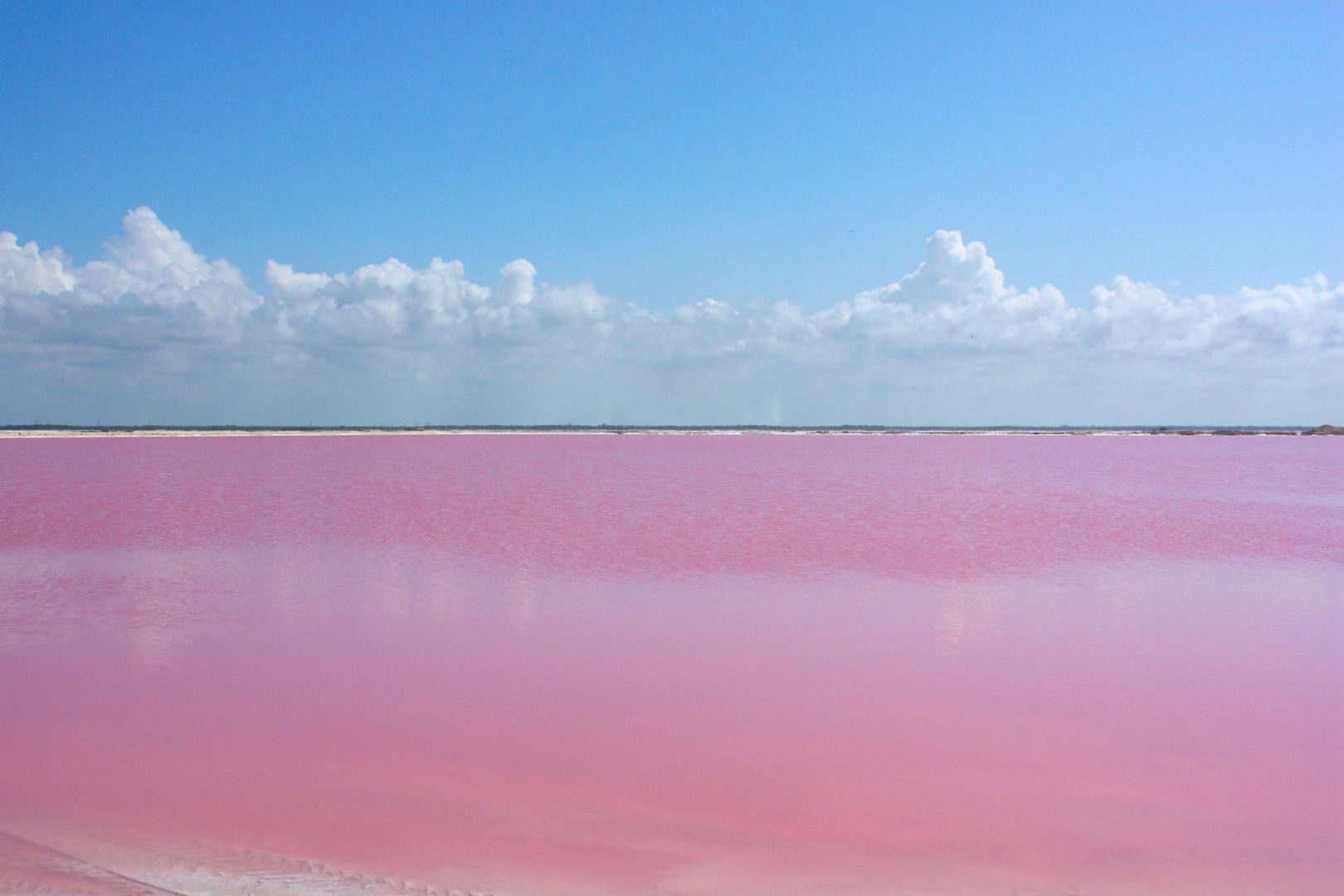 Озеро Сасык-Сиваш (Розовое озеро)