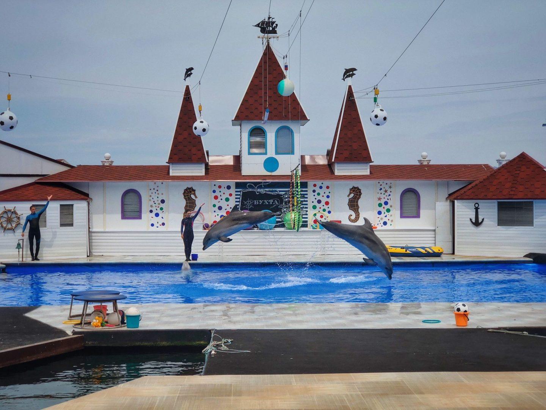 Дельфинарий в Артбухте
